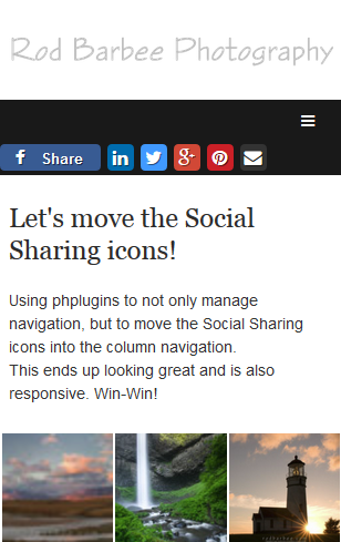 mobile view showing social sharing icons in navigation