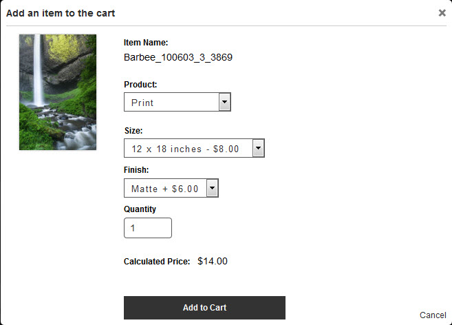 Add to cart dialog with dark colored gallery text.