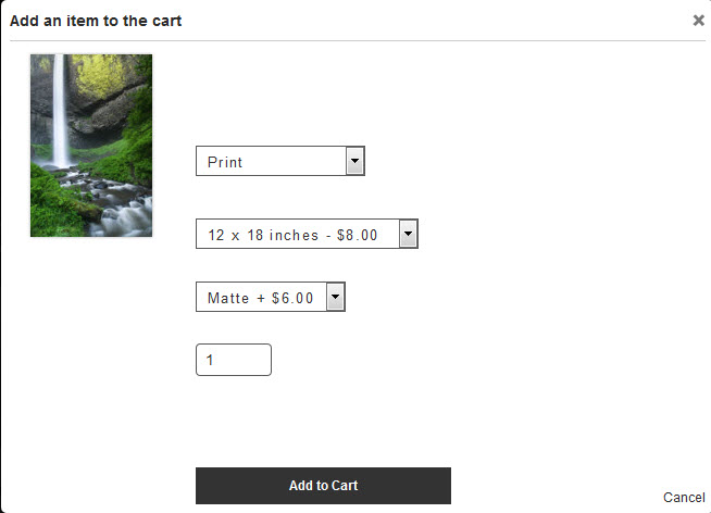 Add to cart dialog. White text used in gallery. Hey... something's missing here!